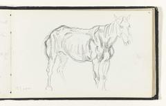 Schets van een paard