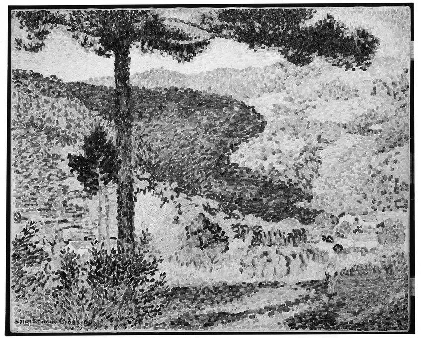 Valley with Fir (Shade on the Mountain)