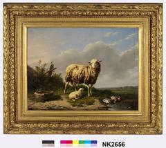 Weide met schaap, lam en eenden